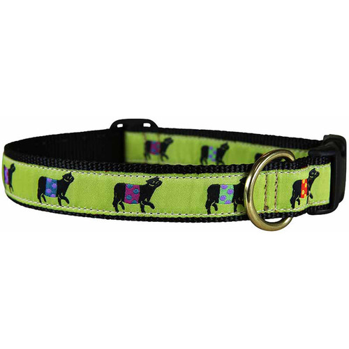 Beltie Dog Collar - Lime 1 Inch