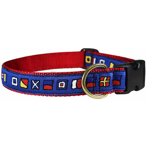 "It's 5 O'Clock Somewhere 1"" Dog Collar"