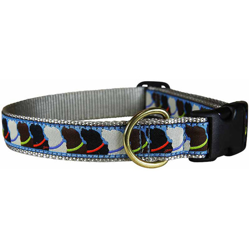 "Who Wants Treats 1"" Dog Collar"