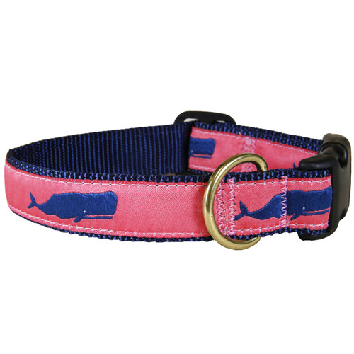 "Coral Moby Whale 1"" Dog Collar"