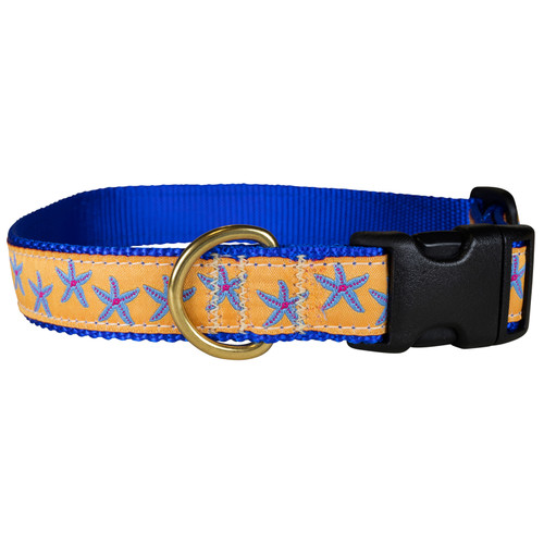"Melon Starfish 1"" Dog Collar"