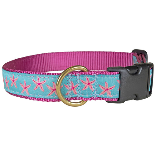"Aqua Starfish 1"" Dog Collar"