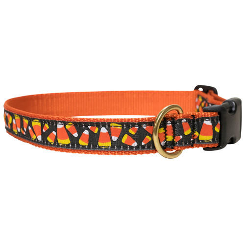 "Candy Corn 1"" Dog Collar"