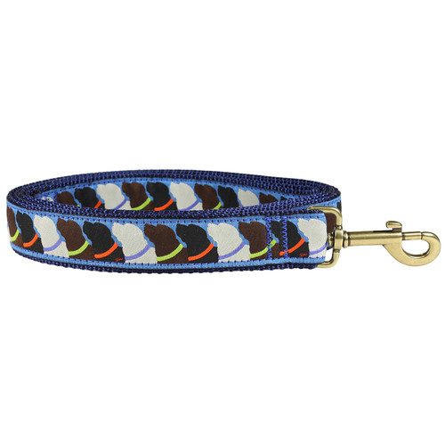 Who Wants Treats Dog Lead | 1.25 Inch