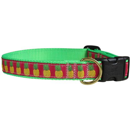 Pineapple Dog Collar - 1 Inch