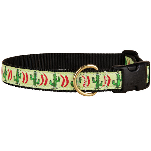 Chili Pepper Cactus Dog Collar | 1 Inch
