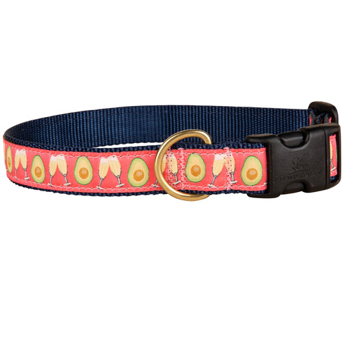 Avocado Toast Dog Collar | 1 Inch