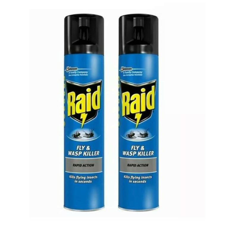 Raid Fly and Wasp Killer Rapid Action Spray Can Pest Insect
