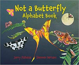 Not a Butterfly Alphabet Books