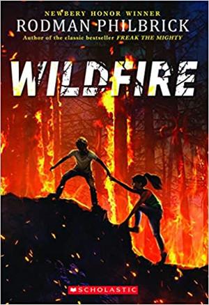 Wildfire : A Novel