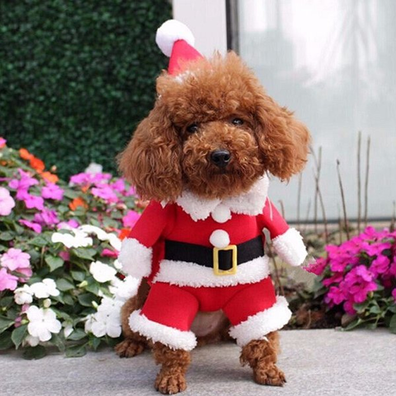 Santa Claus Costume Outfit With Hat Pet Dog Puppy Christmas Clothes Apparel - Santa Claus Costume Outfit With Hat Pet Dog Puppy Christmas Clothes