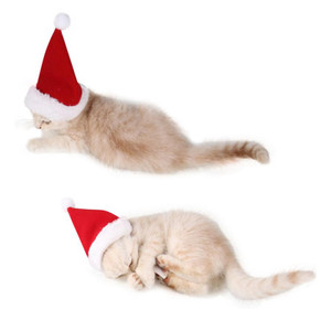 2PCS Pet Cat Dog Santa Hat Scarf Christmas Xmas Red Holiday Costume
