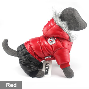 Cheap 8 New Arrival X-Small Jack Russell Terrier Clothes