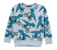RYB Sweatshirt Dino Bike