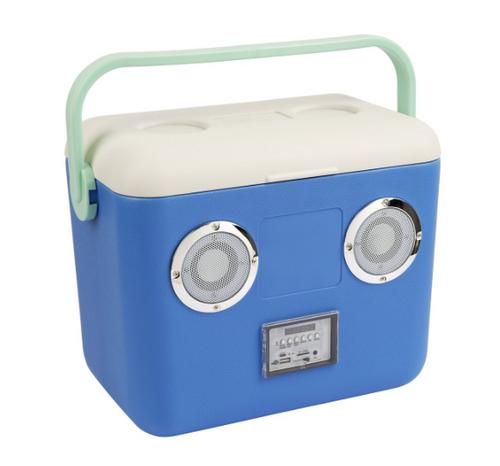 Beach Cooler Box