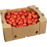 TOMATOES ROMA (10KG)