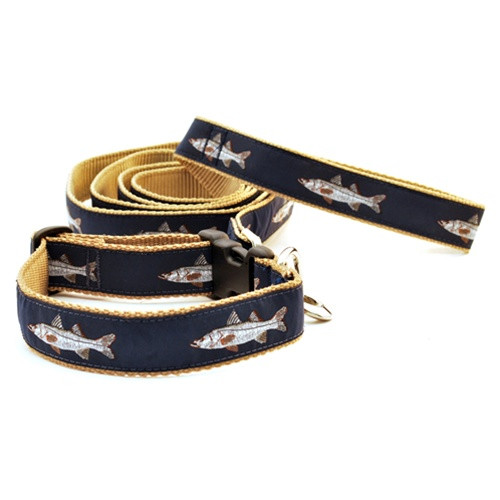 Snook on Navy (Wide Leash)