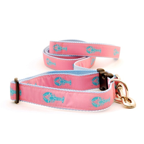 Lobster--Pink on Light Blue (Wide Leash)
