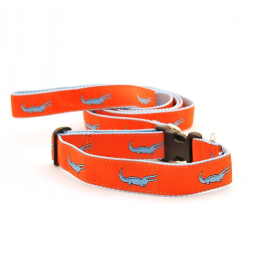 Alligator--Blue on Orange (Narrow Leash)