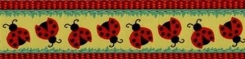 Doodlebug (Narrow Leash)