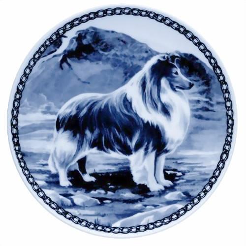 Shetland Sheepdog dbp07107