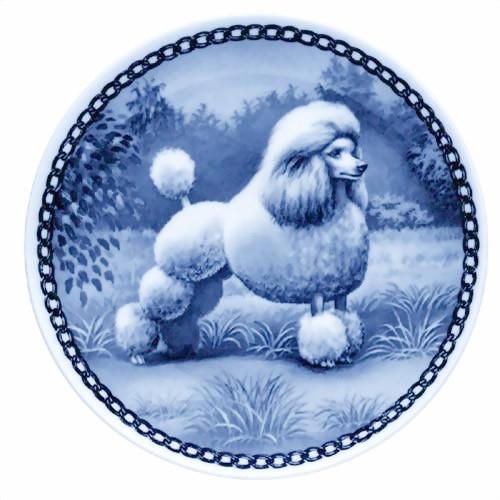 Standard Poodle dbp07134