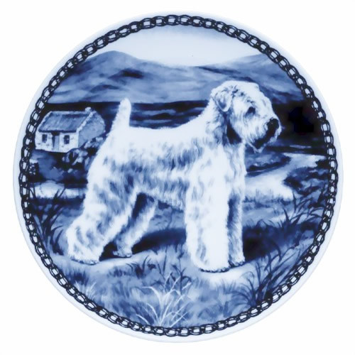 Soft Coated Wheaten Terrier dbp07163