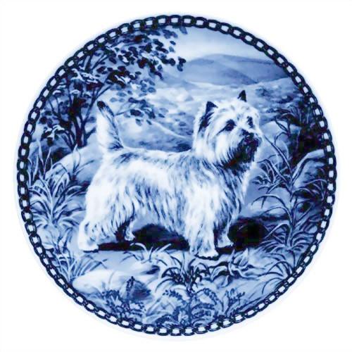 Cairn Terrier dbp07189