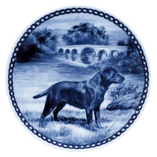 Labrador Retriever dbp07216