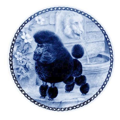 Miniature Poodle dbp07259
