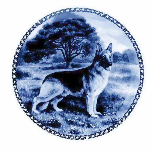 German Shepherd Dog dbp07268