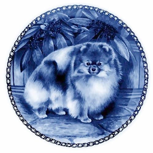 Pomeranian dbp07271