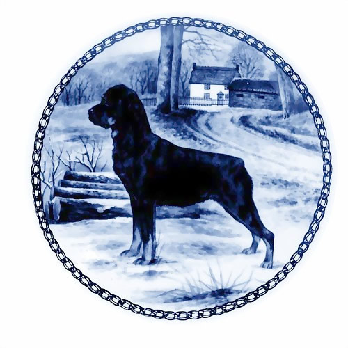 Rottweiler dbp07272
