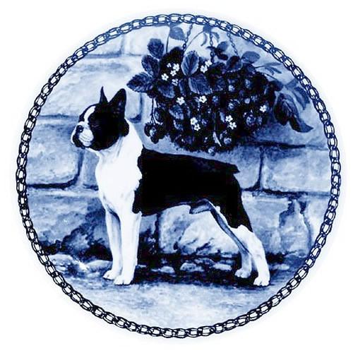 Boston Terrier dbp07284