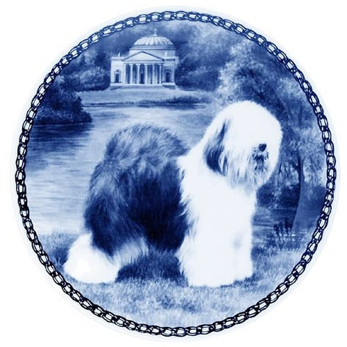 Old English Sheepdog dbp07290