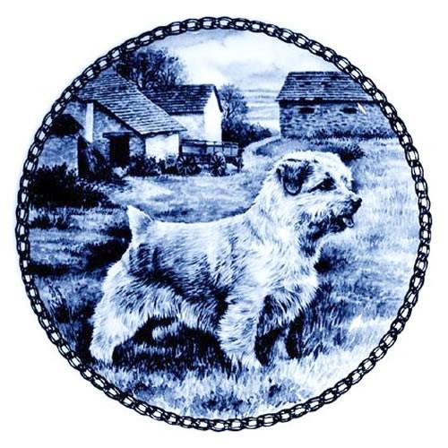 Norfolk Terrier dbp07325