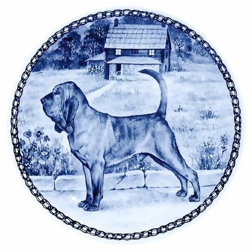 Bloodhound dbp07359