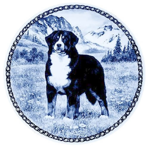 Bernese Mountain Dog dbp07372