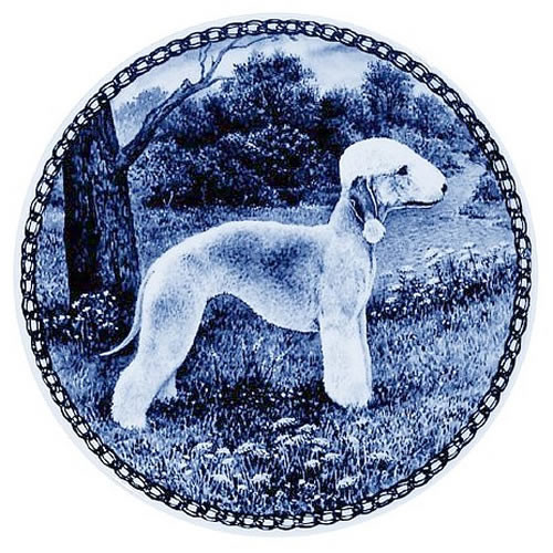 Bedlington Terrier dbp07379