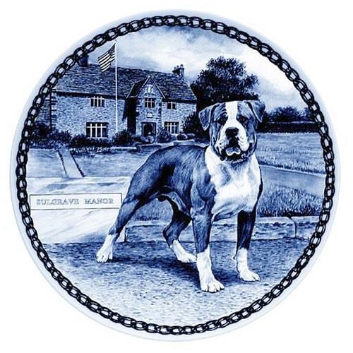 American Bulldog dbp07382