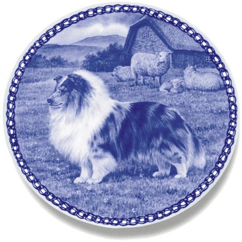 Shetland Sheepdog-Blue Merle