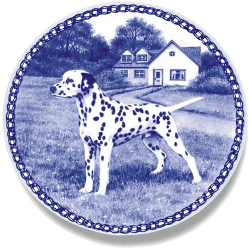 Dalmatian dbp07422