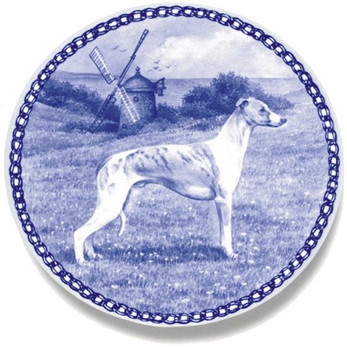 Whippet dbp07423