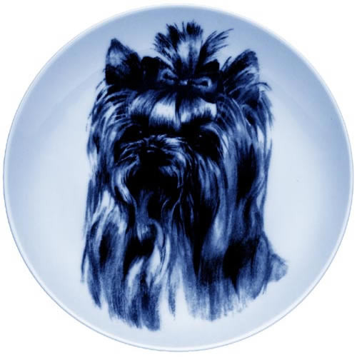 Yorkshire Terrier dbp07506