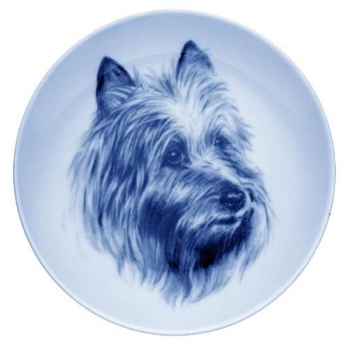 Australian Terrier dbp07522