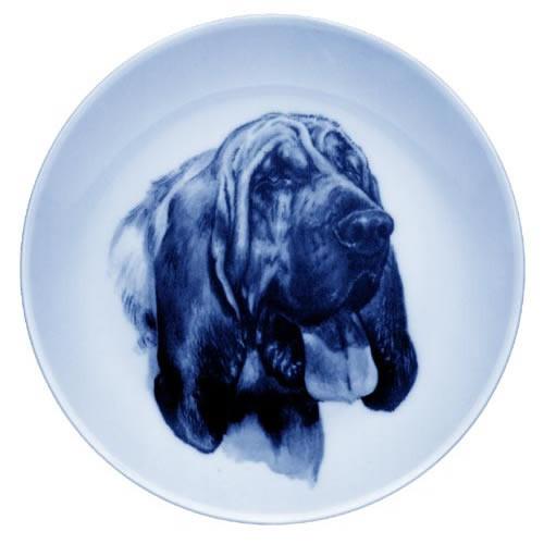 Bloodhound dbp07527
