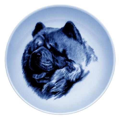 Chow Chow dbp07560