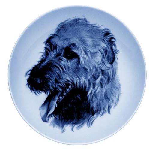 Irish Wolfhound dbp07561