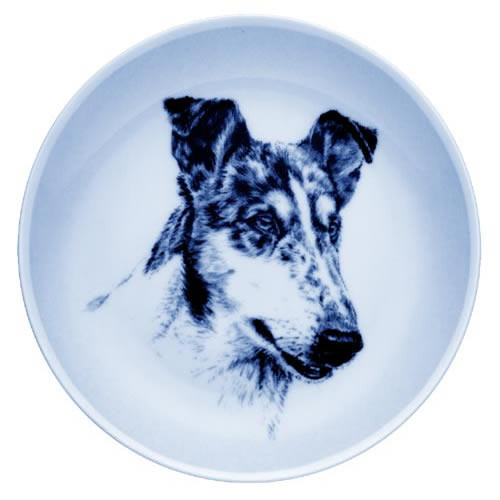 Collie - Smooth - Blue Merle dbp07566