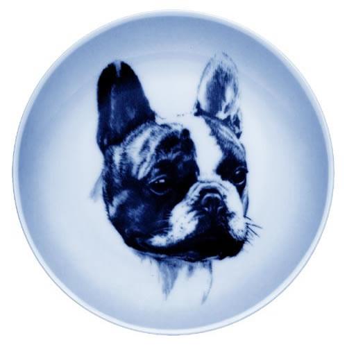 French Bulldog dbp07568